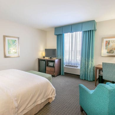Hampton Inn and Suites Orange Beach AL King Standard Feature
